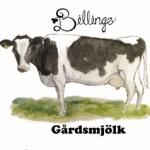 cropped-logo_billingegard.se_web.png